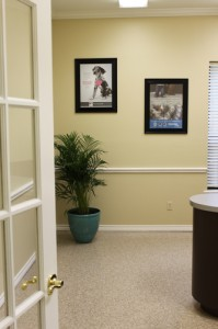 Veterinary Hospital Exam Room 2